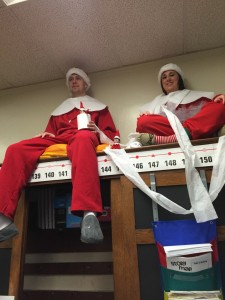 Our Elves on the Shelves